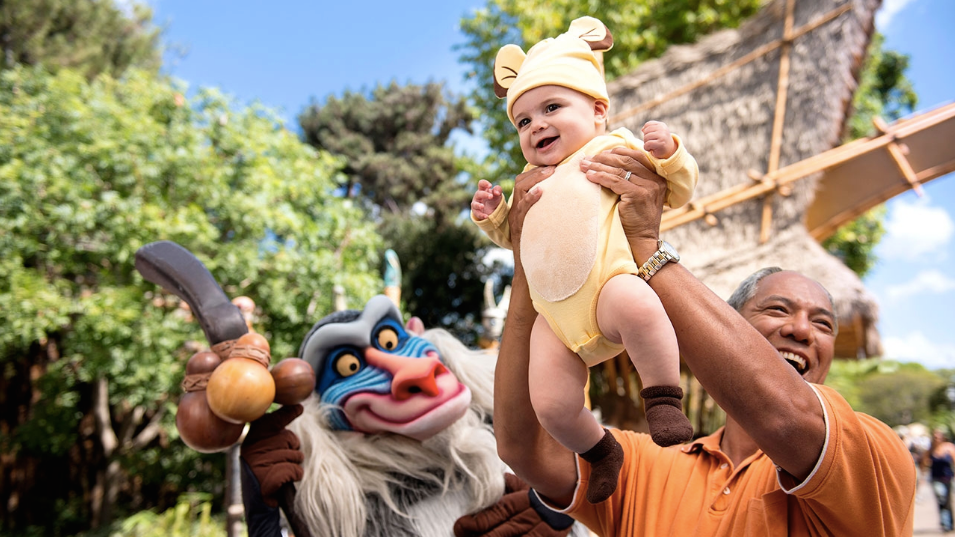 Disneyland Paris Lion King and Jungle Festival Offer!