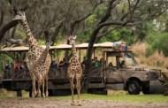 Jabari Joins The Giraffe Herd At Animal Kingdom