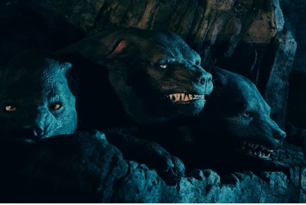 First-Ever Look At Fluffy, One Of The Magical Creatures That Await In Hagrid's Magical Creatures Motorbike Adventure