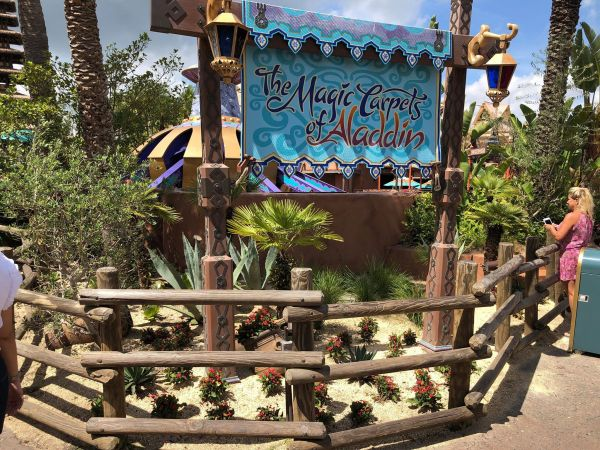 Camel Near The Magic Carpets Of Aladdin Is Missing 3