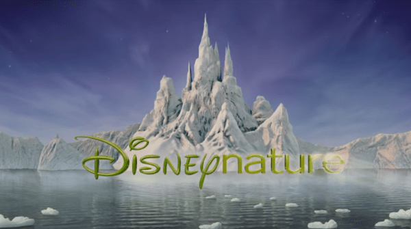 """Disneynature Marks 10 Years with New Video; """"Penguins"""" Opens in 10 Days 1"""