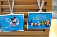 New Hollywood Studios 30th Anniversary Exclusive Merchandise