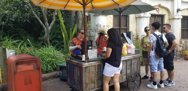 Cool Down with Shaved Ice from Disney's Animal Kingdom 1