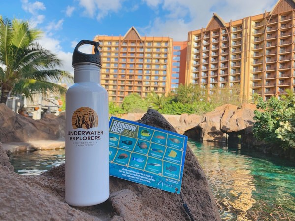 New Experiences At Aulani Resort's Rainbow Reef