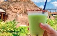 Lime DOLEwhip Margarita! 🌴🌋 at Disney's Polynesian Resort. 🌋🌴