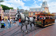 Disneyland Has a New Horse Working on Main Street, U.S.A!