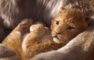 El Capitan Theatre presents Disney's THE LION KING July 18-Sept. 2
