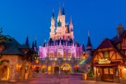 New Disney After Hours Dates Announced For Magic King and Animal Kingdom
