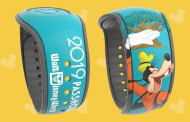 Exclusive New Passholder MagicBand Design Coming This Fall
