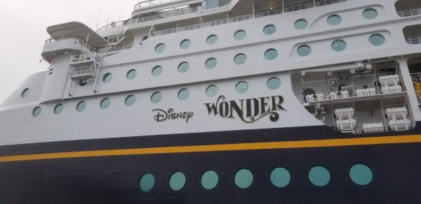 Boy Was Attacked By An Anteater During a Disney Cruise Vacation