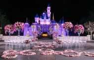 2020 Disney Wedding Showcases Registration Now Open