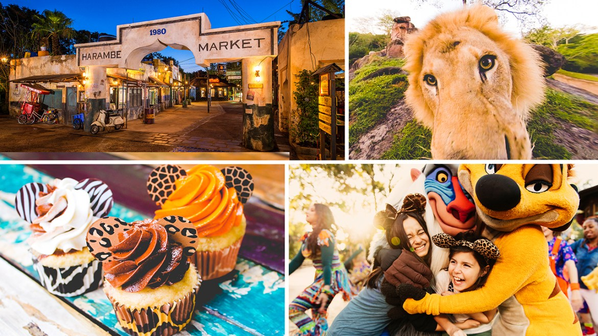 Circle of Flavors: Harambe at Night is returning to Animal Kingdom this December
