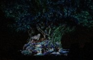 Enchanting New Tree of Life Holiday Projection Show Debuts At Animal Kingdom