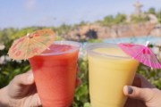 Aesthetically Pleasing Drinks at Typhoon Lagoon