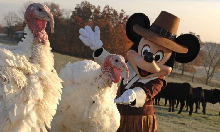 Disney World Celebrates Thanksgiving with Special Meals and Menus