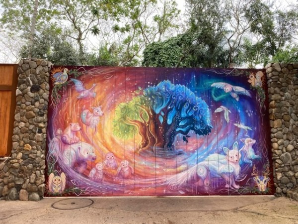 New Holiday Instagram Worthy Wall Spotted at Animal Kingdom