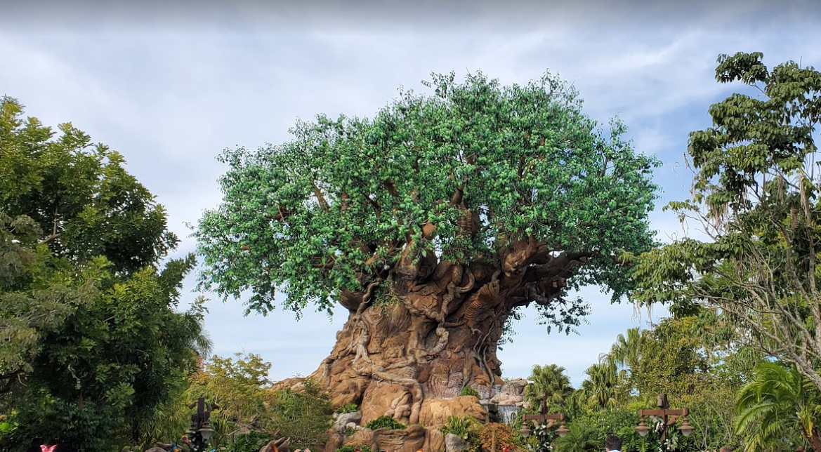 Animal Kingdom Park Hours Extended For March