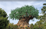 Disney World Guest forgets he has loaded gun in his backpack when trying to enter Disney's Animal Kingdom Park