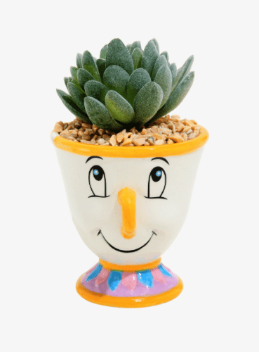 Disney Succulent Planters