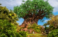 Joe Rohde Is Hosting A Multi-Day Earth Day 50th Anniversary Celebration At Disney's Animal Kingdom