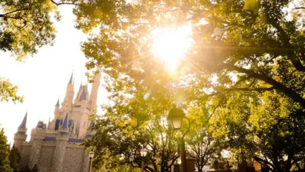 Recent Price Increases Across Walt Disney World Resort 4