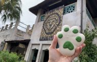 St. Patrick's Day Lion Paw Cookie Makes an Uproar in Disney's Animal Kingdom
