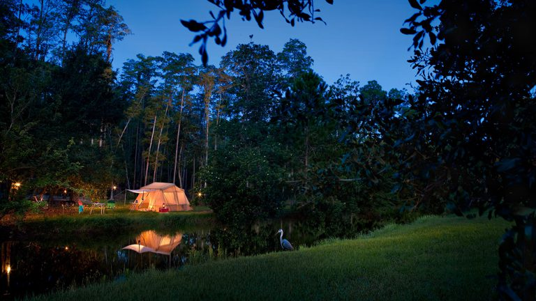 Disney Releases Spring Discount for Campsites at Fort Wilderness Resort & Campground