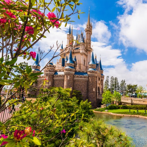 Magical Disney Sunrises from around the globe 7