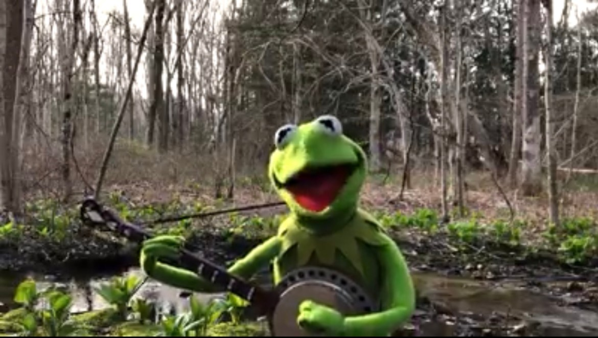 Kermit the Frog sings Rainbow Connection