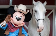 Checking on the Disneyland horses with Disneyland President Rebecca Campbell