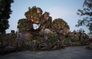 Celebrating the Third Anniversary of Pandora at Walt Disney World!