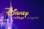 Disney College Program to Remain Suspended