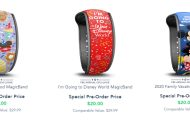 New Premium Disney MagicBand Designs Released