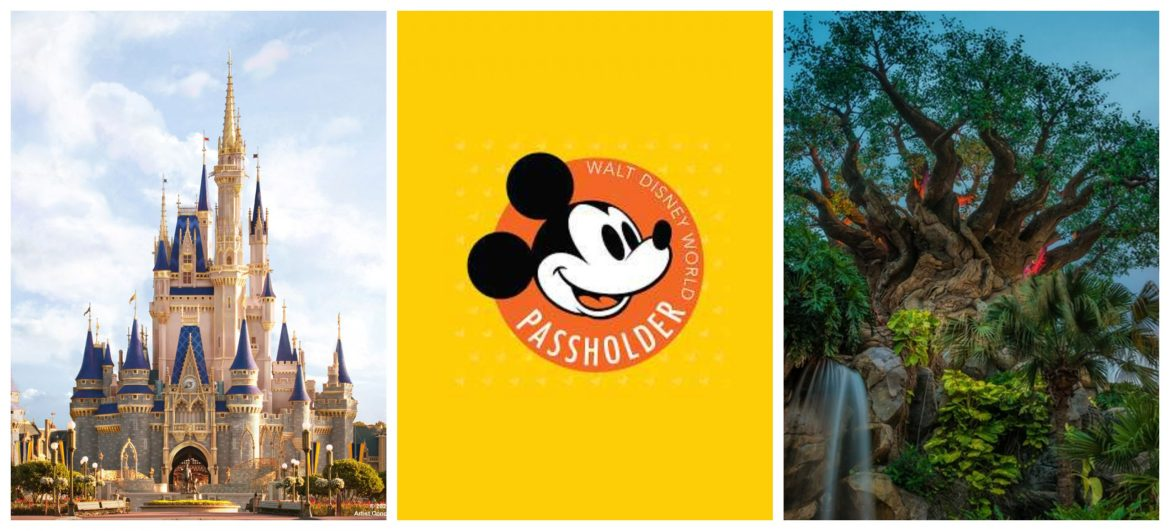 Disney World Annual Passholders will need to provide their own transportation for AP Previews