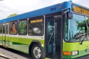 New Eco-Friendly UP! Buses at Disney World