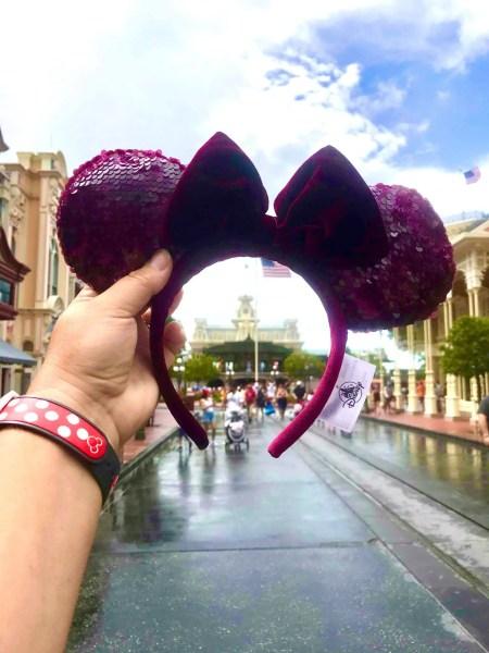 Sangria Minnie Ears