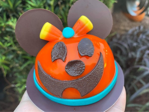 This adorable Minnie Dome Cake is practically perfect for fall 2