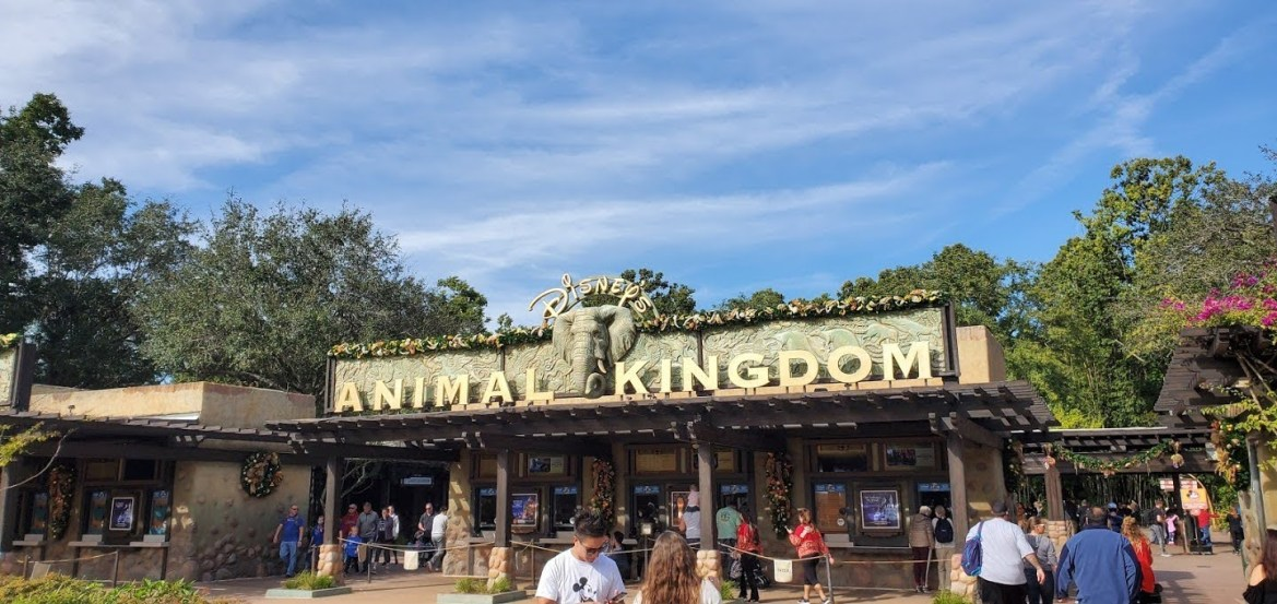 Reality TV Star Assaults a Disney Cast Member After Refusing to Leave Line