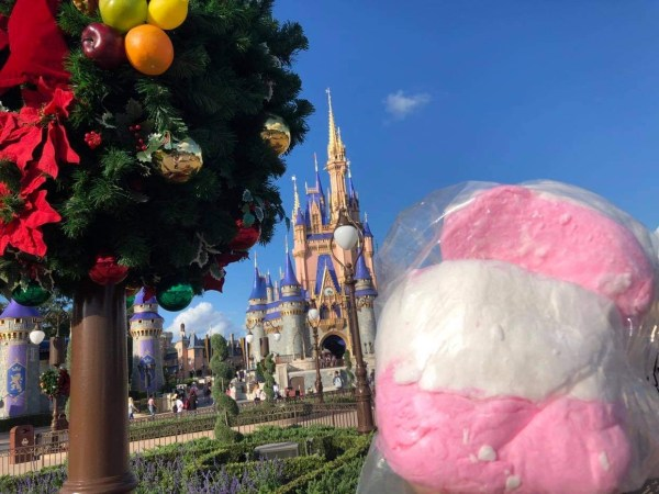 Holiday Cotton Candy at the Magic Kingdom 2