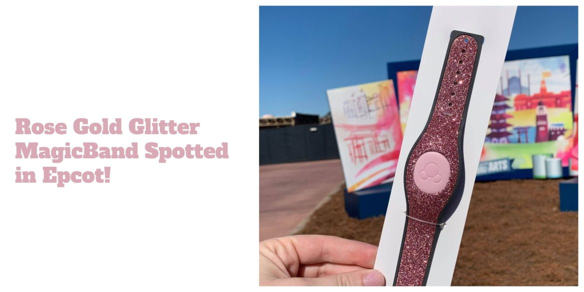 Rose Gold Glitter Magic Band spotted at Disney World