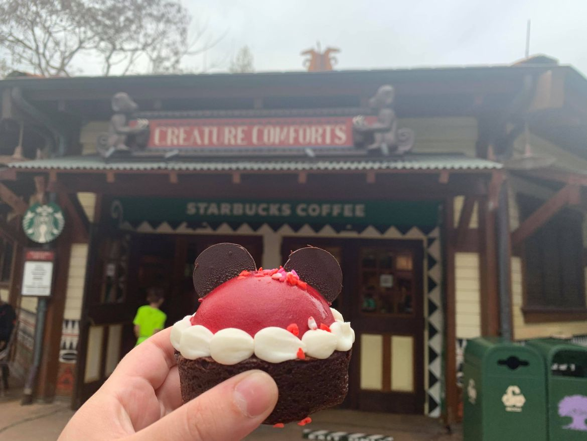 Valentine's Brownie with Mousse Dome available for a Limited Time in Animal Kingdom!
