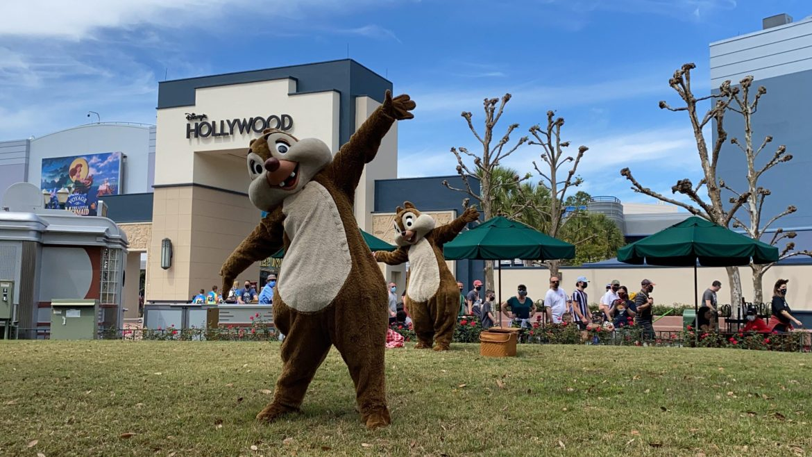 Have a picnic with Chip and Dale in Hollywood Studios