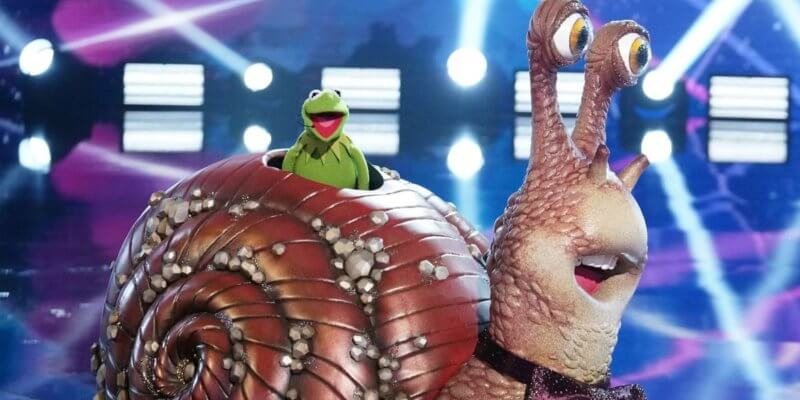Muppets Fans were Shocked by Kermit the Frog Reveal After Elimination from 'The Masked Singer'