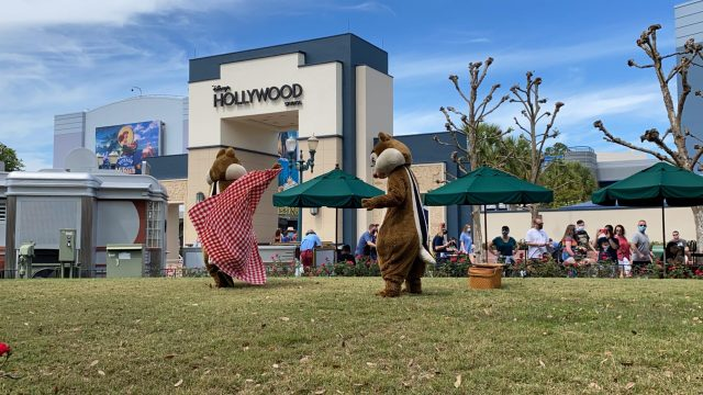 Have a picnic with Chip and Dale in Hollywood Studios 4