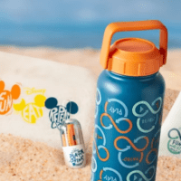 Disney Reusable Collection