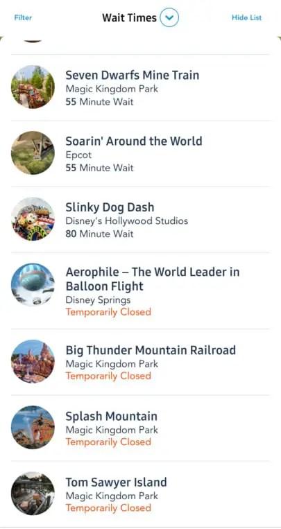 Storms shut down many Walt Disney World attractions 3