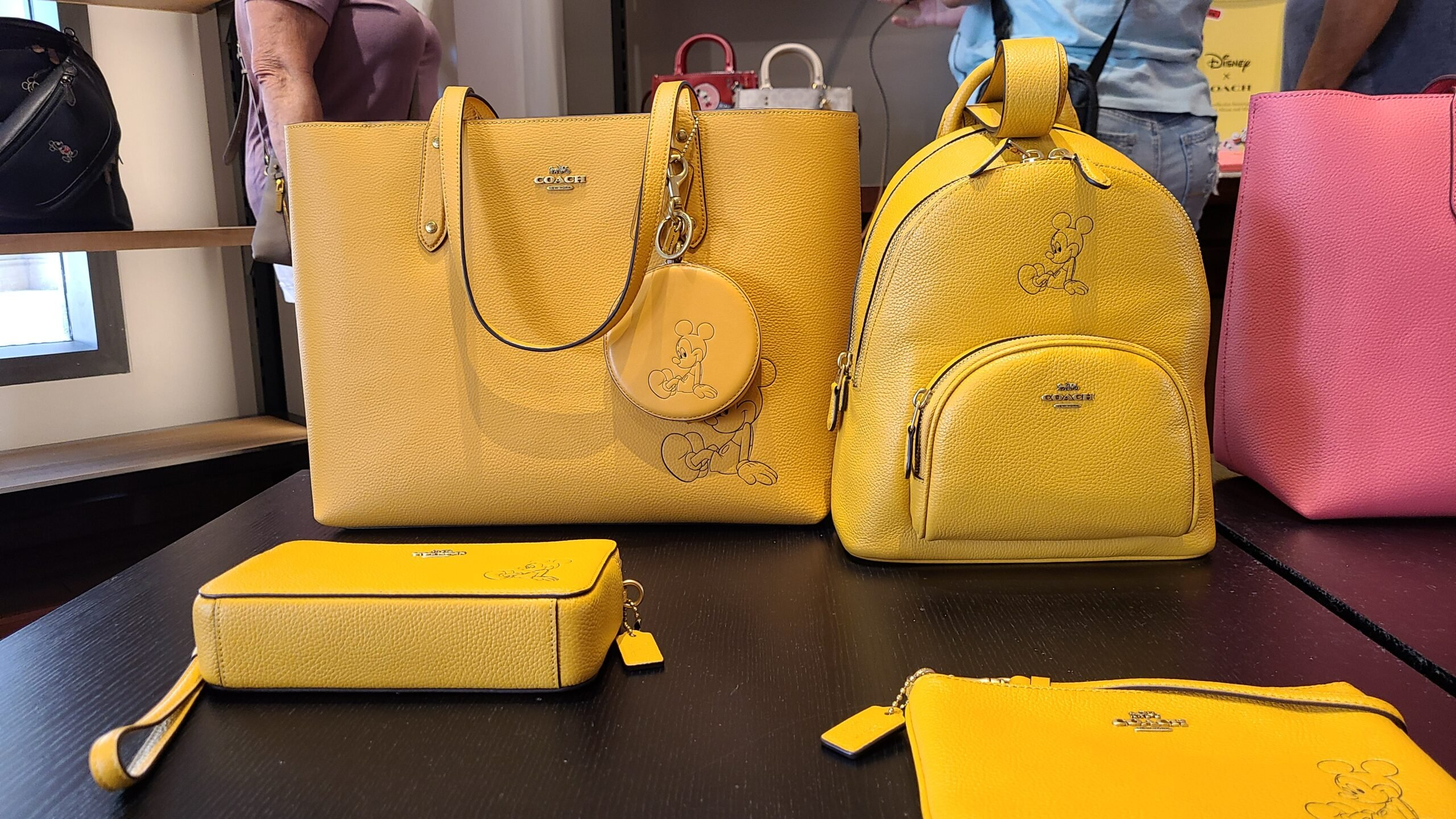New Mickey & Minnie Coach Collection spotted at Disney Springs 10