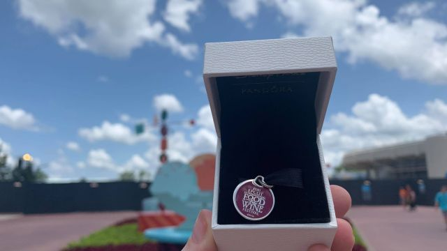 First look at the Epcot International Food & Wine Festival Merch for 2021 39