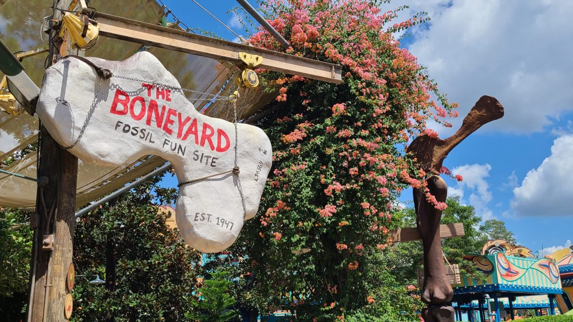 Boneyard Play Area in the Animal Kingdom Partially Reopens