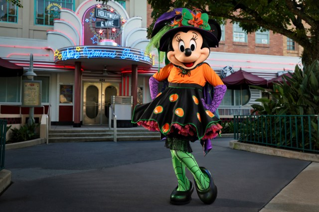Frightfully Fun Snacks and treats coming to Disney World for Halloween 4